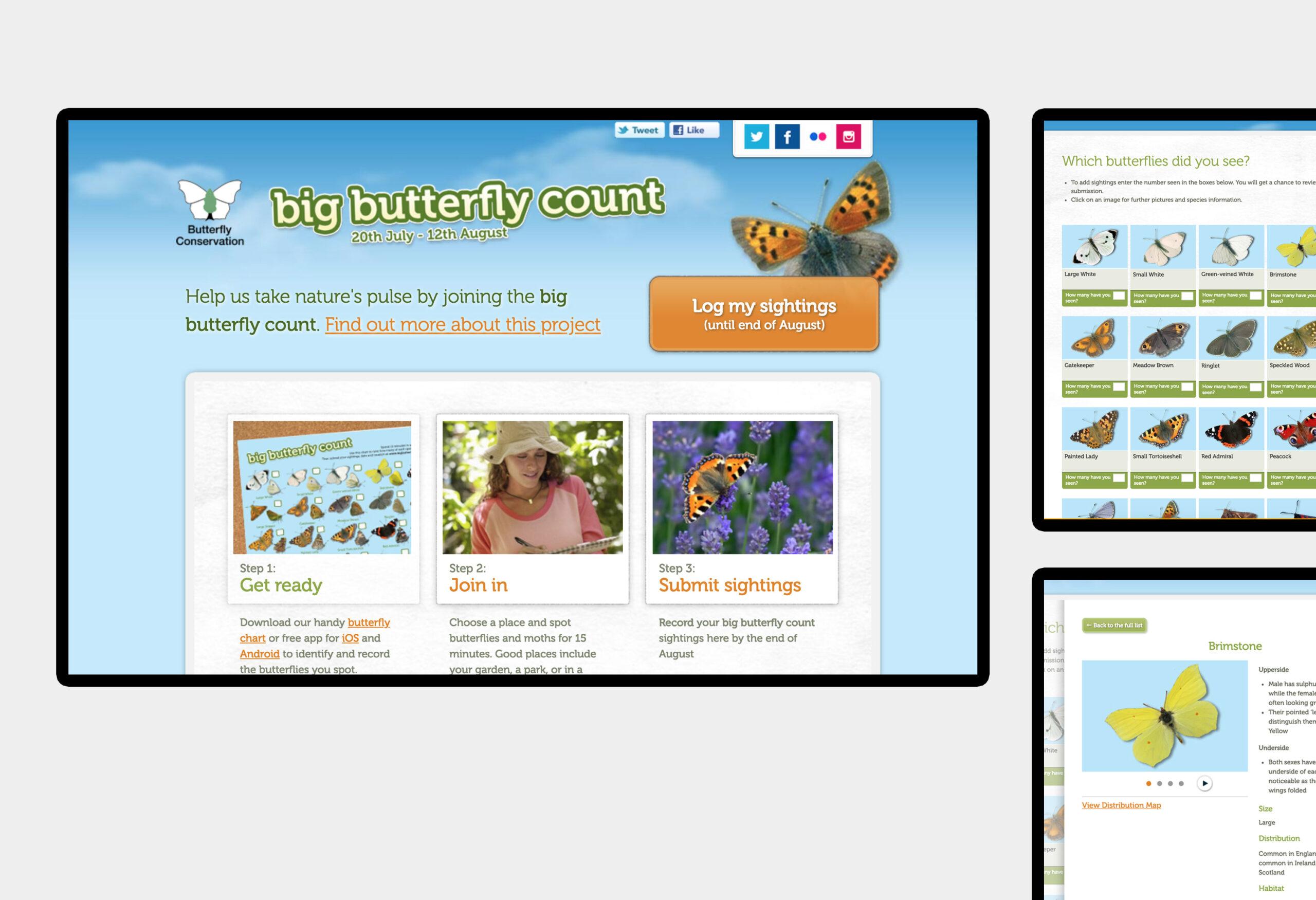 Big Butterfly Count - website design