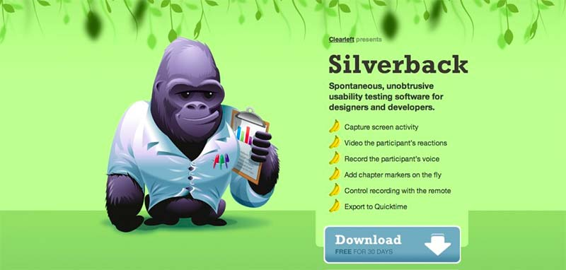 Picture of the Silverback website