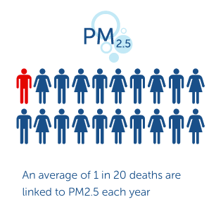 Visualisation illustrating the average of 1 in 20 deaths linked to PM2.5 particulates each year